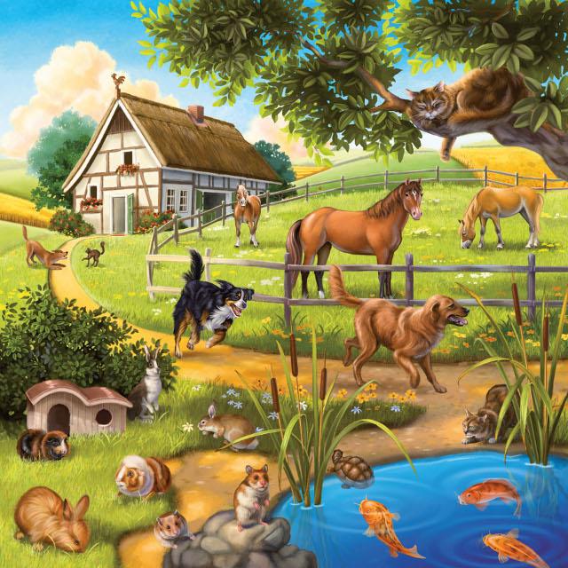 Domáce zvieratá 3 x 49d
