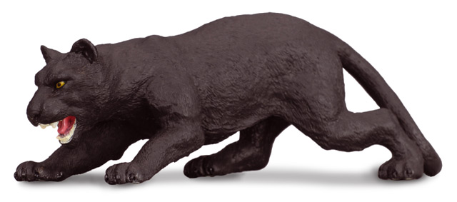 Leopard čierny