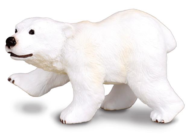 Medveď polárny, mláďa stojace