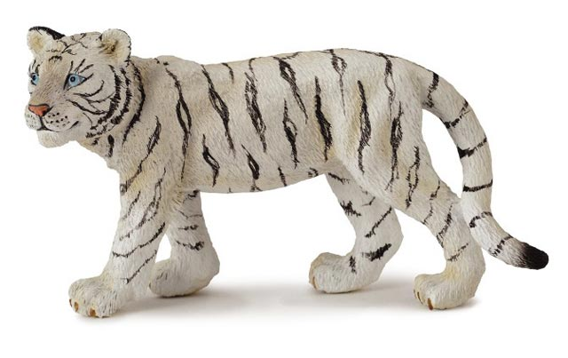 Tiger biely mláďa stojace