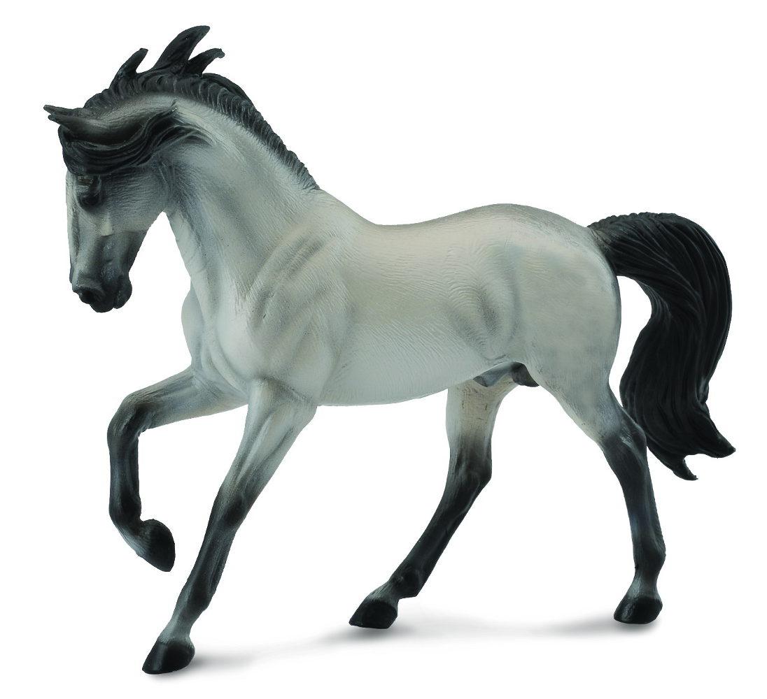 Andalúzsky kôň - šedivý