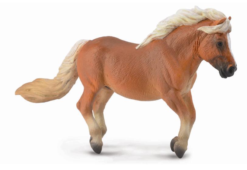 Shetlandský pony - gaštan